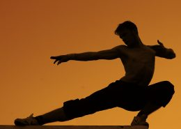 Martial_arts_in_the_sunset_Stefano_Kocka